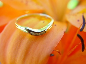 wedding-ring-3852_640